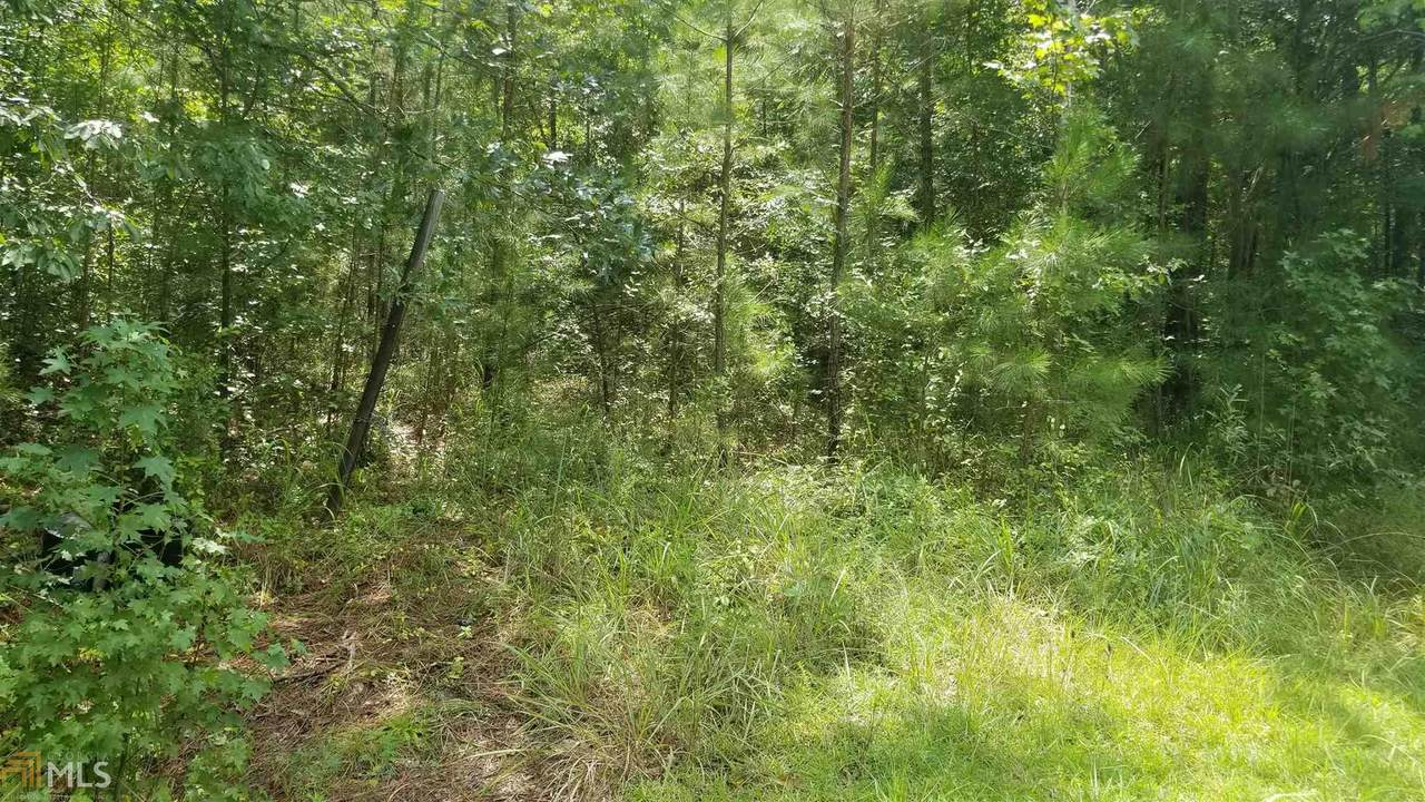 0 Lower Little River Dr - Photo 1