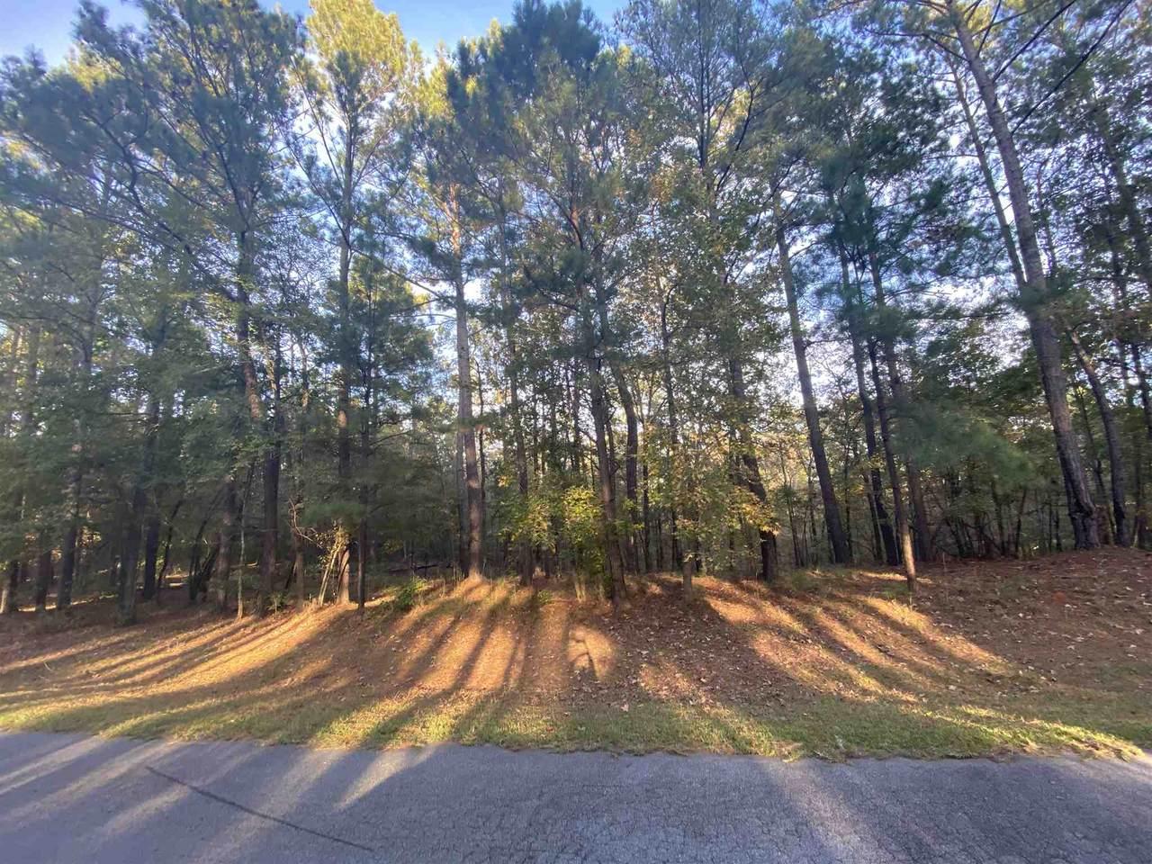 1061 Shadow Creek Way - Photo 1