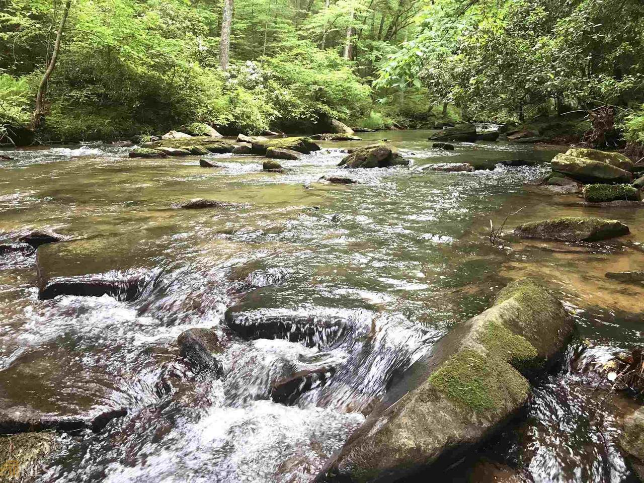 1.27 Mountain Creek Hollow - Photo 1