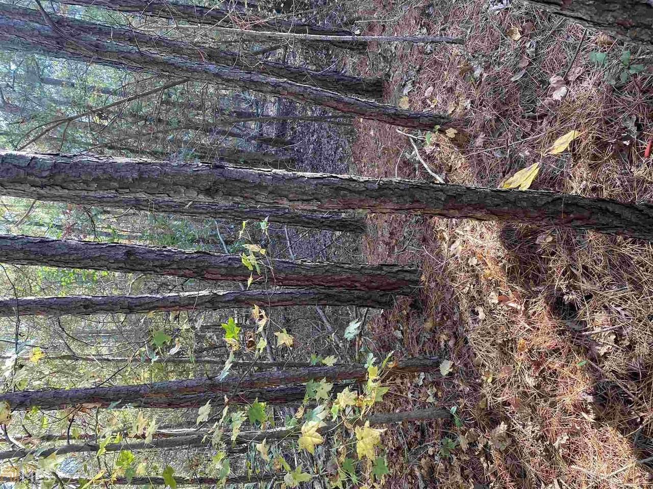 0 Dogwood Ln - Photo 1