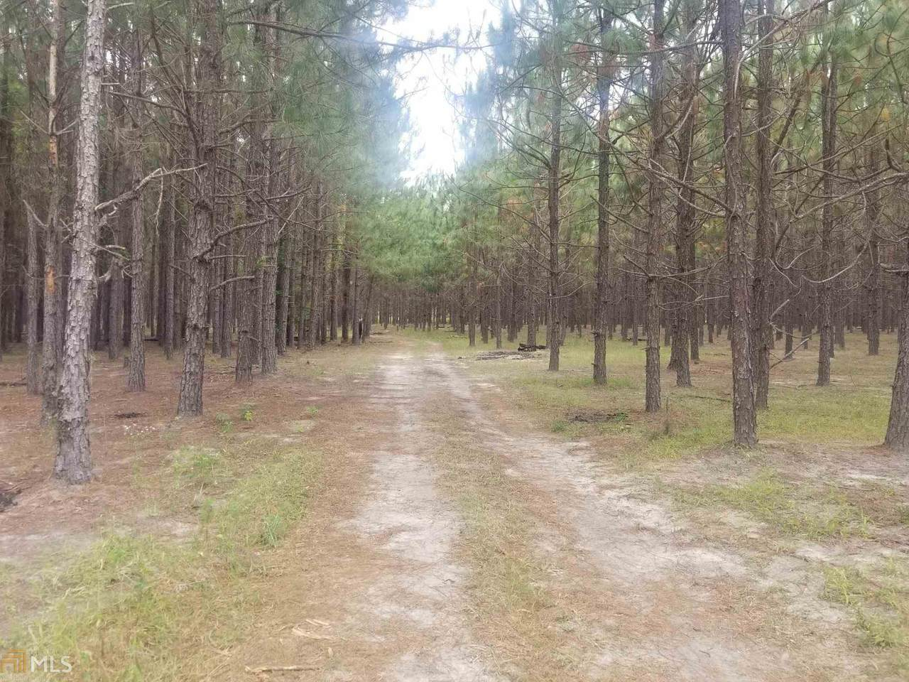 0 Highway 230 Lower River Rd - Photo 1