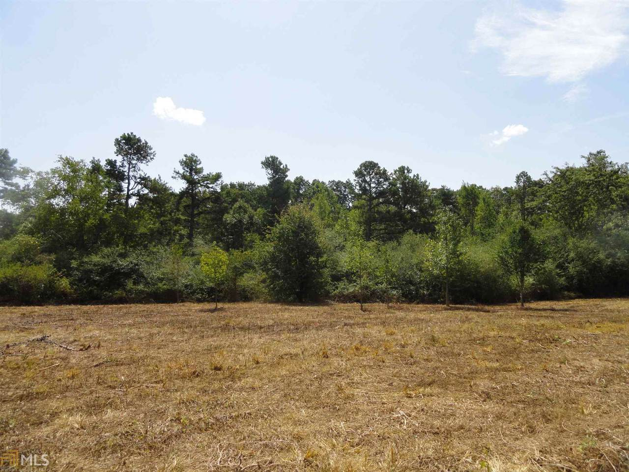 Lot 3 Pea Ridge Rd - Photo 1