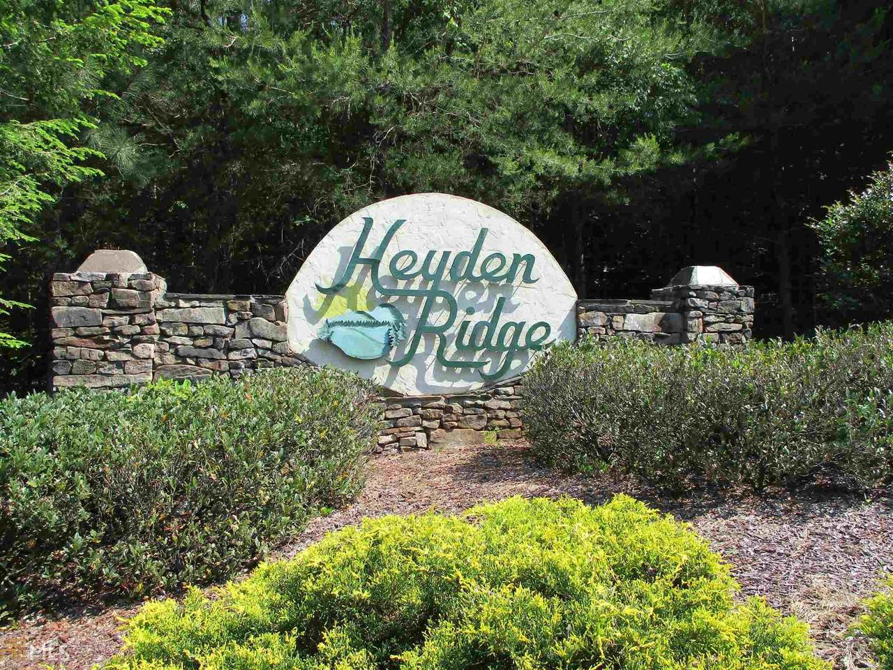 0 Heyden Ridge Dr - Photo 1