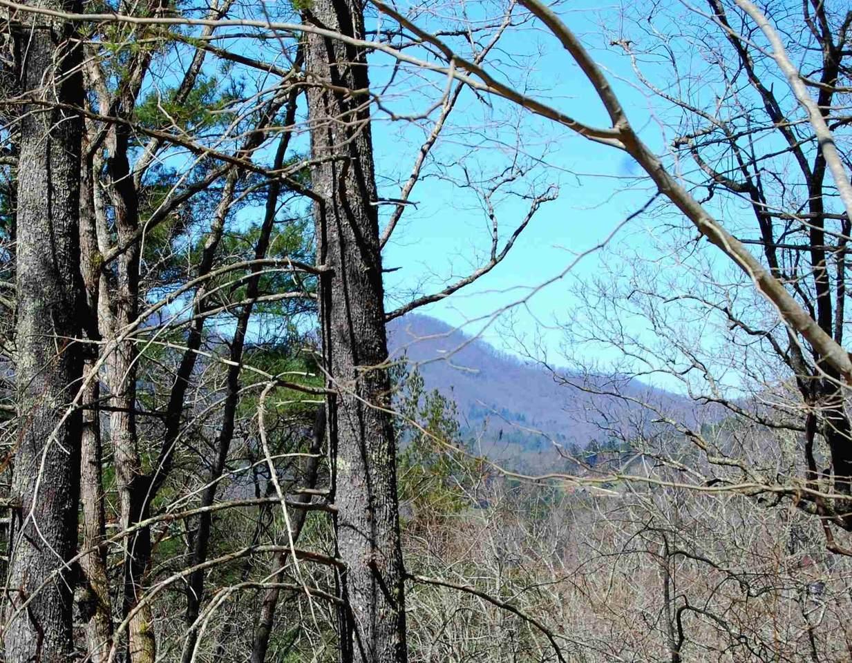 0 Mountain Ridge - Photo 1