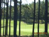 0 Arbor Springs Pkwy - Photo 13