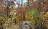 0 Elsberry Ridge Dr - Photo 6