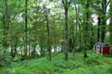 8 Dogwood - Photo 7