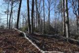 0 Headwaters Ct - Photo 9