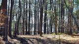 5431 Mayflower Ct - Photo 41