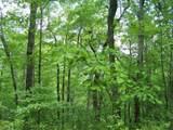0 Wild Bird Lane (Alex Mountain) - Photo 10