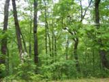 0 Wild Bird Lane (Alex Mountain) - Photo 5