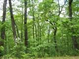 0 Wild Bird Lane (Alex Mountain) - Photo 9