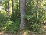 0 White Pine Acres - Photo 2