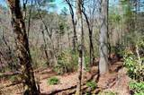 0 Mountain Ridge - Photo 3