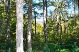 0 Pinnacle Ridge - Photo 3