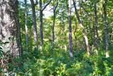 0 Pinnacle Ridge - Photo 4