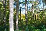 0 Pinnacle Ridge - Photo 6