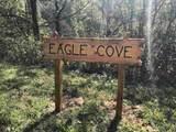 0 Eagle Cv - Photo 30