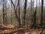 0 Pleasant Mtn Dr (Southwoods Pt 4) - Photo 8