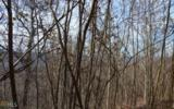 0 Burnt Leaf - Photo 16
