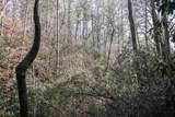 0 Woods - Photo 8
