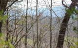 Lot 5 Deer Valley - Photo 1