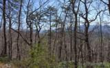 Lot 5 Deer Valley - Photo 3