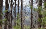 Lot 31 Deer Valley - Photo 13