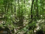 0 Taliaferro Springs Rd - Photo 10