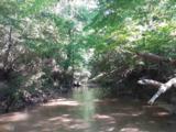 175 Gum Creek Cir - Photo 36