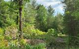 0 White Pine Ridge - Photo 10