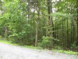 4 Mill Creek Acres - Photo 2