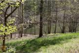 0 Ranch Mountain - Photo 12