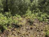 0 Spring Cove Trail, Lot 38 - Photo 19
