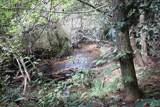 0 Bean Creek Rd - Photo 1