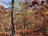 12 Mountain Creek Trl - Photo 6