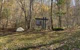 0 Wolfpen Gap Rd - Photo 11