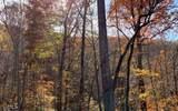 0 Wolfpen Gap Rd - Photo 20