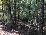 129 Wild Pansy Ridge - Photo 3