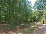 LOT 8 Deer Ridge Drive - Photo 9