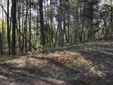 0 Fouche Gap Rd - Photo 1