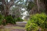 1782 Blythe Island Drive Fiddler Island - Photo 35