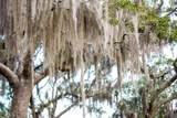 1782 Blythe Island Drive Fiddler Island - Photo 36