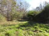 38.6 Acres Cross Creek Ln - Photo 12