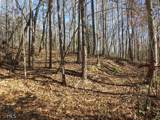 38.6 Acres Cross Creek Ln - Photo 13