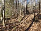 38.6 Acres Cross Creek Ln - Photo 14