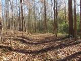 38.6 Acres Cross Creek Ln - Photo 15