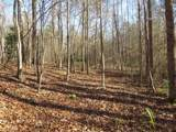 38.6 Acres Cross Creek Ln - Photo 16