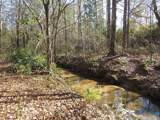 38.6 Acres Cross Creek Ln - Photo 18