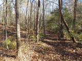 38.6 Acres Cross Creek Ln - Photo 22